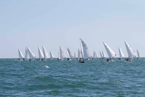 The Fleet downwind
